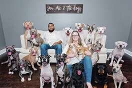 Amanda Hulebak said she hopes her 2018 Christmas card photo reads more like a public service announcement that raises awareness about Houston's stray dog population.