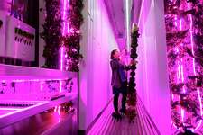Megan Meduna, the SEFCU farmer, pulls out a rack of lettuce that is growing inside a hydroponic Freight Farm outside of SEFCU?'s Corporate Center on Monday, Dec. 17, 2018, in Albany, N.Y. SEFCU announced on Monday that it is purchasing an additional Freight Farm for the Boys and Girls Clubs of the Capital Area. The Freight Farm will help to feed fresh vegetables to children in the club, it will teach them about technology and farming and is will generate additional revenue for the club. (Paul Buckowski/Times Union)