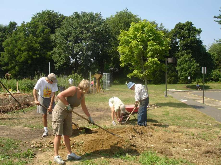 Gardeners tend their plots at the Westport Community Gardens on Hyde Lane. The gardens will be open for public tours Saturday from 9 a.m. to noon. Photo: Contributed Photo / Westport News