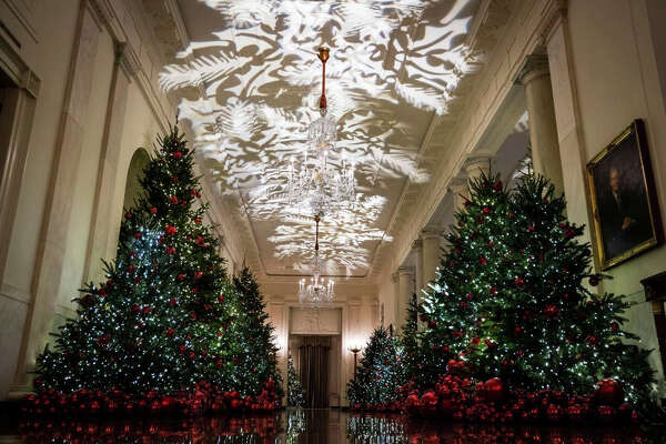 Christmas trees line the hall of the White House's Cross Hall.
