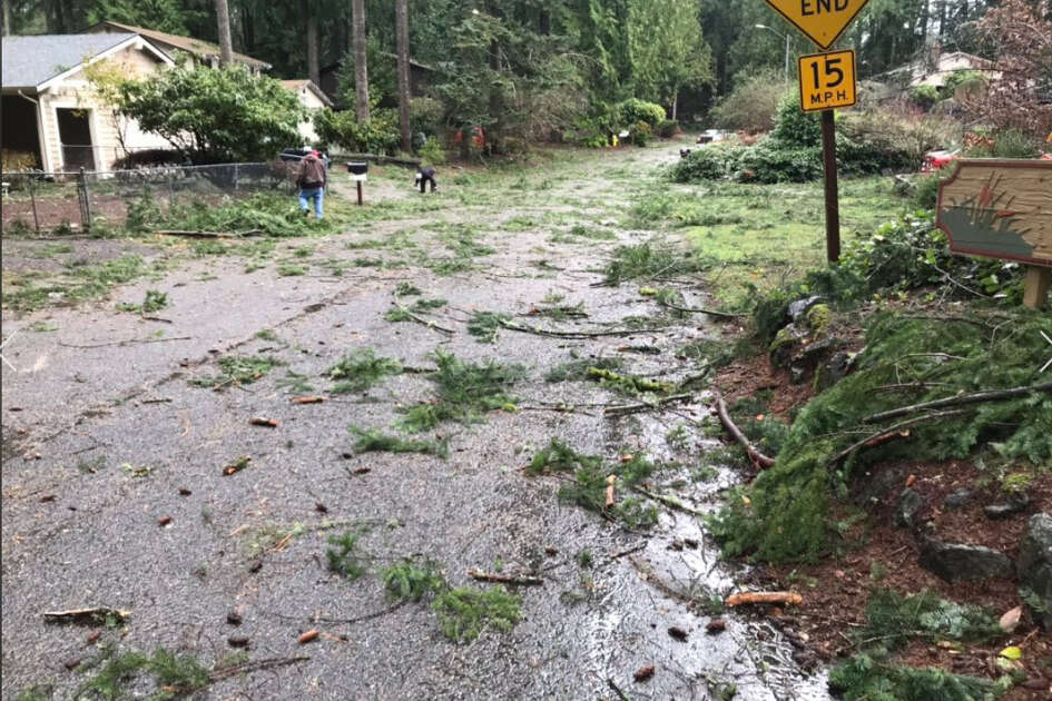 Tornado damage near Port Orchard on Tuesday.
