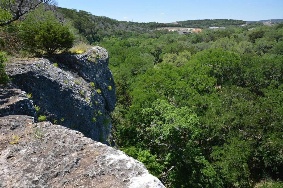 """A limestone bluff on the northern side of San Antonio known as """"Medicine Wall"""" will become the city's first official outdoor rock climbing wall in 2020."""