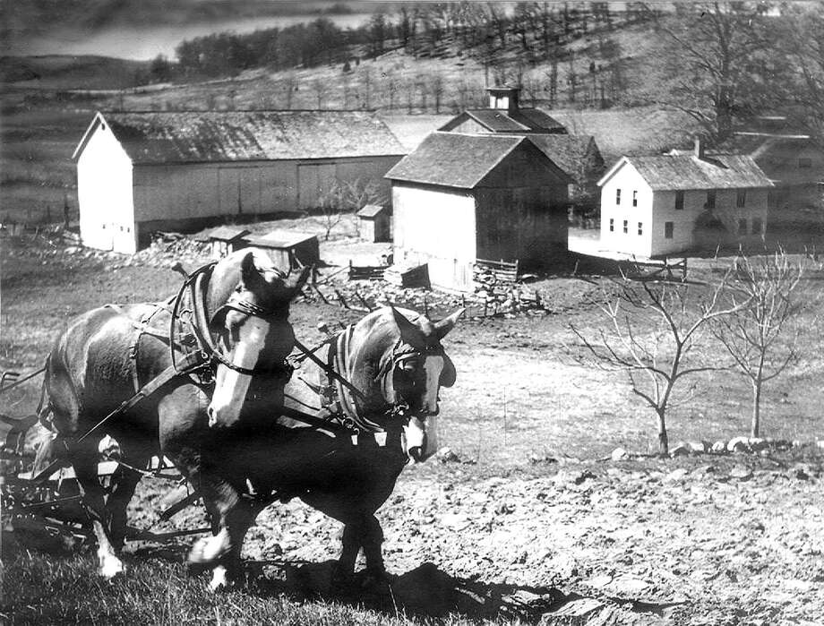 "A farm near the intersection of Route 67 and Dorwin Hill Road in New Milford was thriving through much of the middle part of the 20th century. Above, a team of horses plows a hillside overlooking the farmhouse and barn complex during the 1930s. In this view looking west, Route 67 is seen in the distance as it heads from New Milford to Bridgewater. If you have a ""Way Back When"" photograph you'd like to share, contact Deborah Rose at drose@newstimes.com or 860-355-7324. Photo: Courtesy Of Barbara Tanguay / The News-Times Contributed"