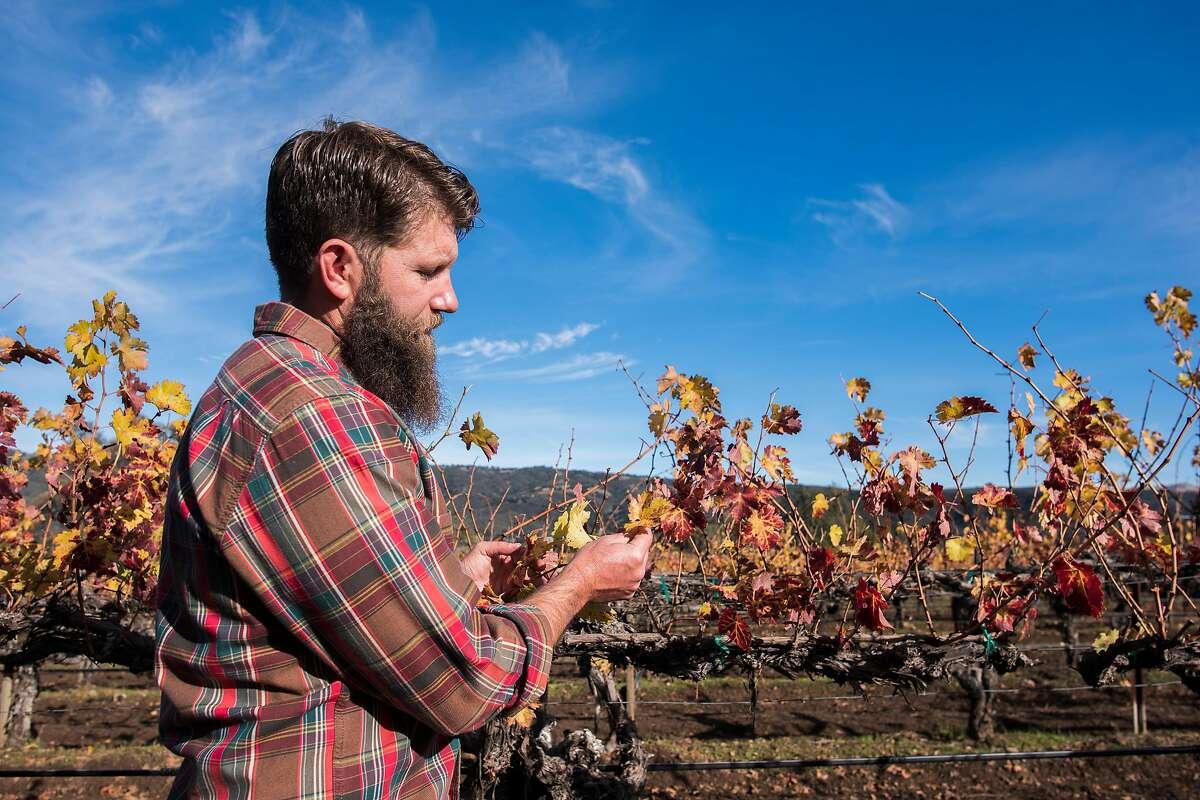 Winemaker Ian Brand at Durney Vineyard in Carmel Valley, Calif. where he pulls fruit to make cabernet.