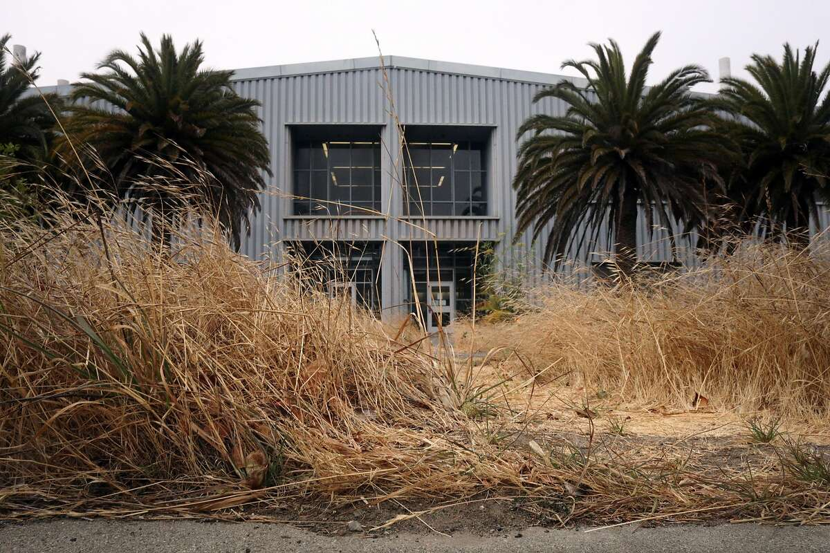 Foliage is seen in front of Building 606 at the former Hunters Point Naval Shipyard on Wednesday, July 25, 2018 in San Francisco, Calif.