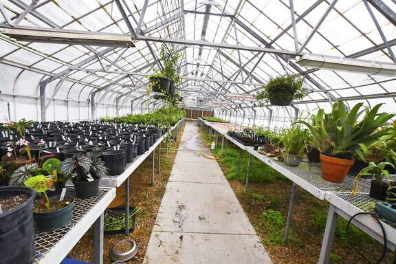 The Mercer Botanic Gardens is seeking to obtain 35 acres of land located just south of the current property and will tear down the current greenhouses before building new ones.