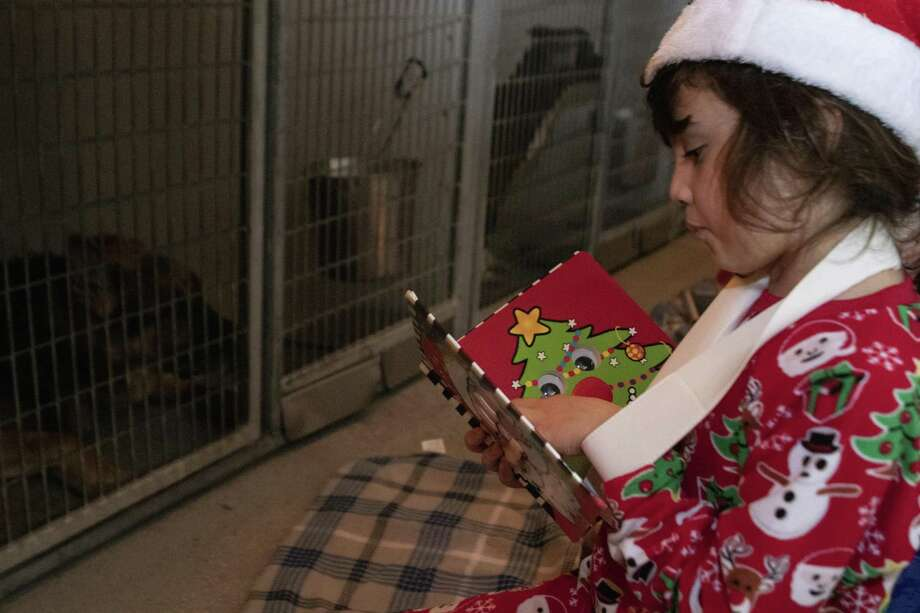 Sophie Devoley, 8, reads a Christmas book to shelter dogs Saturday, Dec. 22, 2018 during Christmas at the Montgomery County Animal Shelter in Conroe. Photo: Cody Bahn, Houston Chronicle / Staff Photographer / © 2018 Houston Chronicle