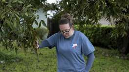 Jamie Massey, director of training at Guide Dogs of Texas, touches a low-hanging branch identified by her guide dog in-training Ike, who is supposed to stop at such obstacles and alert his owner before continuing on, outside of the Guide Dogs of Texas training facility in San Antonio on Friday, November 9, 2018.