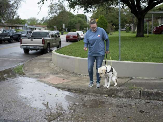 Jamie Massey, director of training at Guide Dogs of Texas, watches as her guide dog in-training Ike stops and assesses the obstacle in front of him before alerting his owner and continuing on, outside of the Guide Dogs of Texas training facility in San Antonio on Friday, November 9, 2018. The guide dogs must be able to alert their legally blind owners of such obstacles as they appear. Photo: Matthew Busch, For The San Antonio Express-News / For The San Antonio Express-News / © Matthew Busch