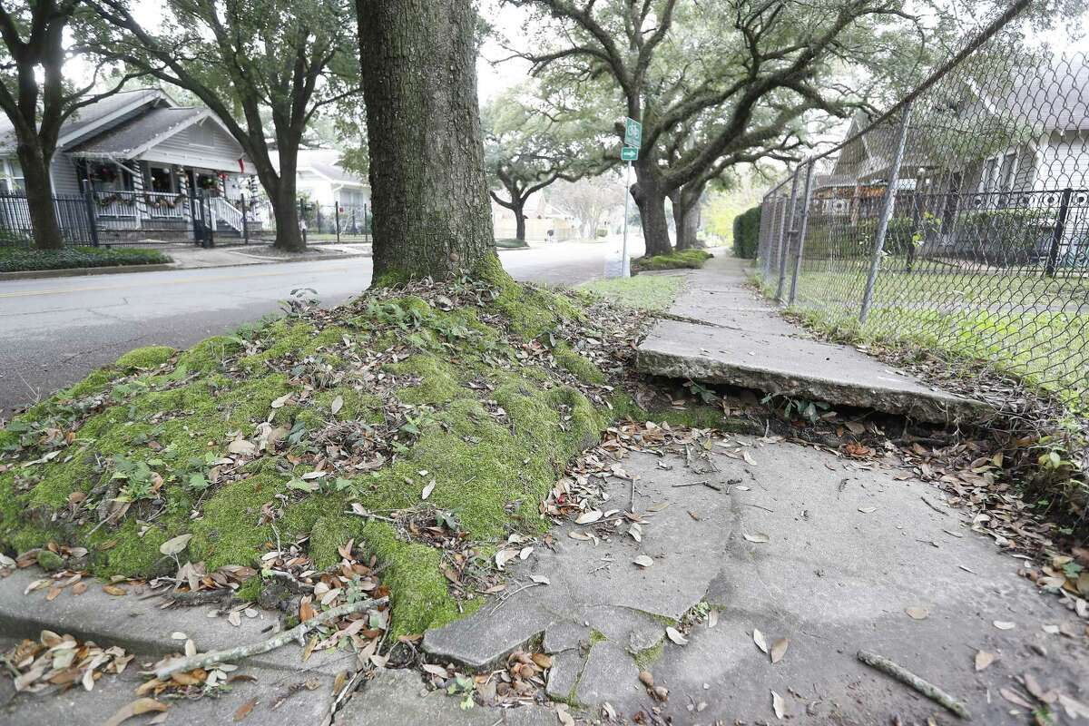 A sidewalk, which is raised up due to tree roots that run under the concrete, poses a risk to joggers and an inconvenience to walkers on Bayland Street in the Heights. Advocates with the 6-year-old Houston Complete Streets Coalition want to work toward a sidewalk plan for the city by assessing the presence and condition of existing sidewalks, compiling the resulting information in a database and using it, alongside identified priorities, to guide decisions on where to install and repair sidewalks. About $83 million is needed to fulfill 580 pending requests for new sidewalks