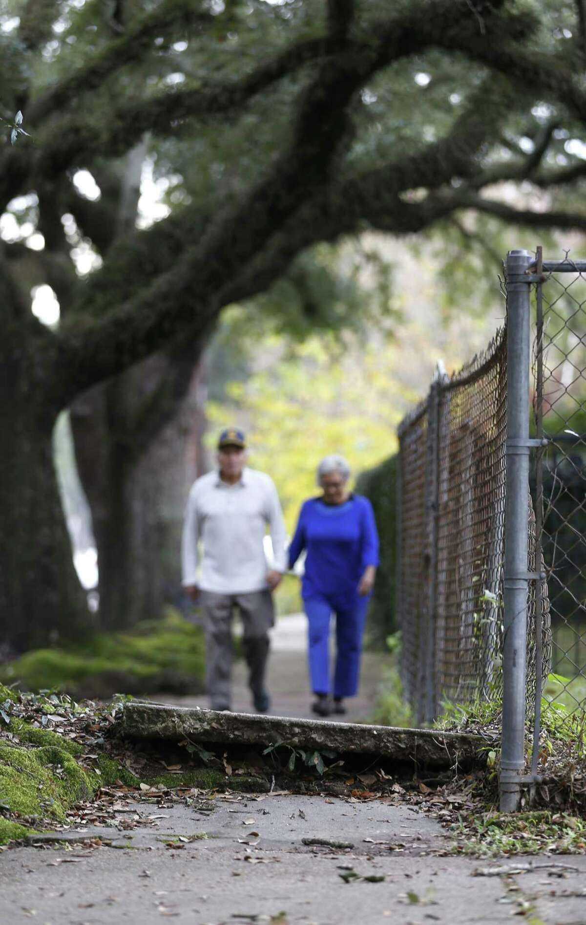 Walkers have to step carefully along a disjointed sidewalk in the Heights, Wednesday, Dec. 19, 2018, in Houston.