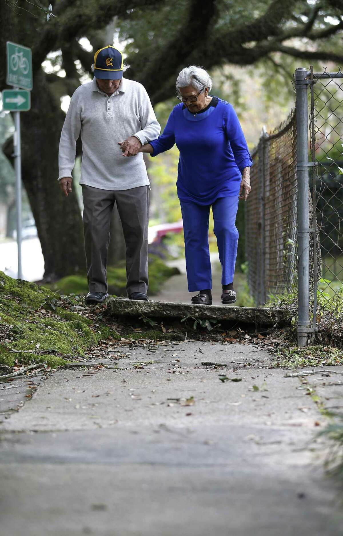 Sidewalks like this one in the Heights, where tree roots have forced a section out of joint, can a turn a simple walk around the block into an obstacle course.
