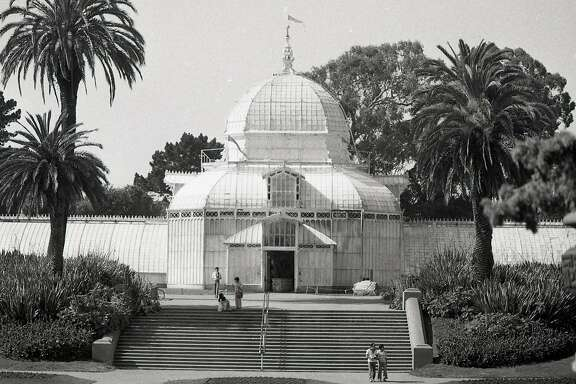 Doss Walk column on the Conservatory of Flowers in Golden Gate Park, May 19, 1978