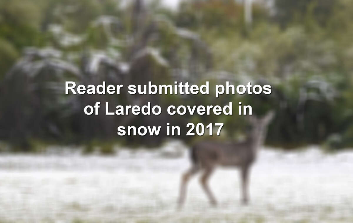 Click through the gallery to see reader submitted photos from Dec. 8, 2017, Laredo's first snowfall in over 13 years.
