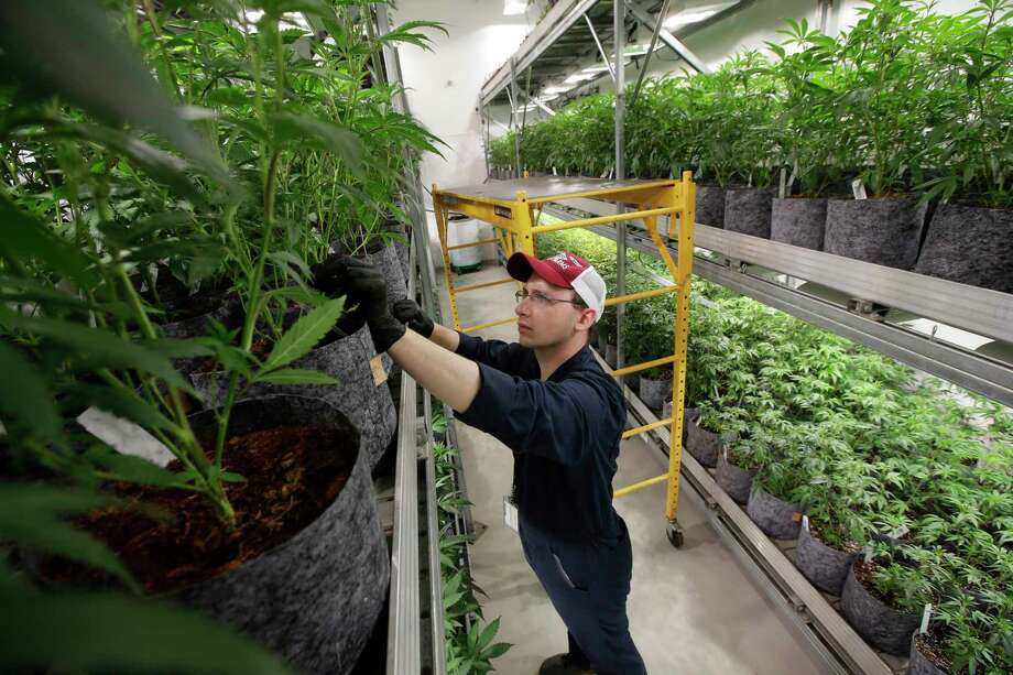 PHOTOS: Where marijuana is legal for recreational use in America in 2018