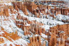 Bryce Canyon National Park, UT Rim Trail, 1-5 mile round-trip The image of Bryce Canyon's hoodoos frosted with snow is one of the most stunning sights in the West. The park's signature hike, the Rim Trail, curves around the rock formation-filled amphitheater and can be tackled as easily or as adventurously as you choose. The mostly flat one-mile round-trip hike from Inspiration point to Sunset Point is fairly reliably open all winter. For more of a challenge, continue onto Fairyland Point, a 4-mile round-trip addition. This section is much steeper, and you're likely to need crampons or clip-on traction devices. Be sure to check for trail closures before setting out.