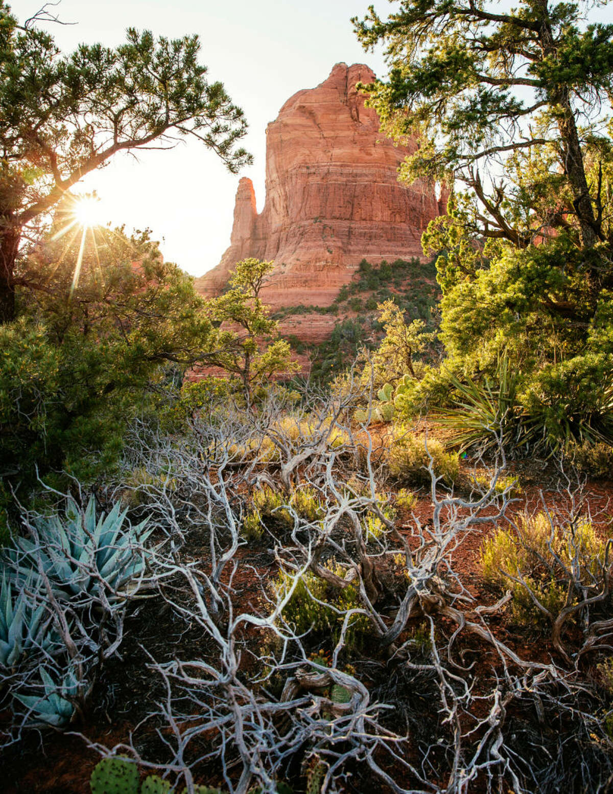 Sedona, AZ This red-rock wonderland has it all. Vortex seekers can soak in the sacred energy (and crystal stores), fitness buffs can hike and bike world-class trails (Devil's Bridge Trail is a must) and vegetarians can indulge in the organic, plant-based menu at ChocolaTree. Stay at Mii Amo, the ultimate spa retreat.