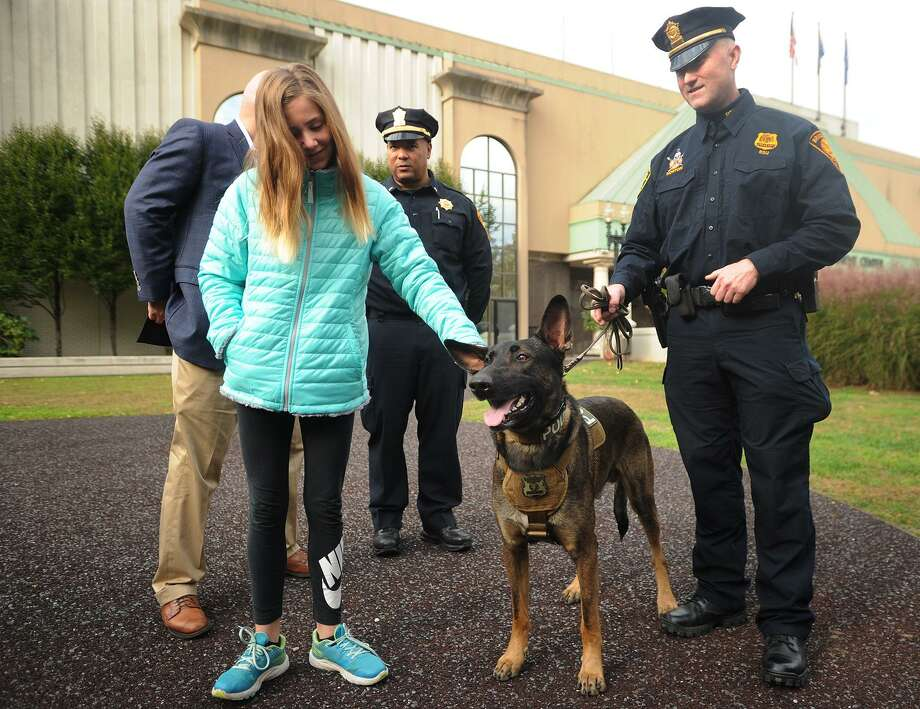 Bridgeport Police Sgt. Erick Norton, right, introduces the department's new explosive detection canine, Dennis, outside the Margaret Morton Government Center in Bridgeport, Conn. on Tuesday, October 23, 2018. At left is Riley Hickey, 11, of Guilford, whose family paid for the dog's acquisition. Hickey's grandfather, Dennis Hickey, for whom the dog is named, was the owner of Bridgeport-based business Sonitrol Security Systems. Photo: Brian A. Pounds / Hearst Connecticut Media / Connecticut Post