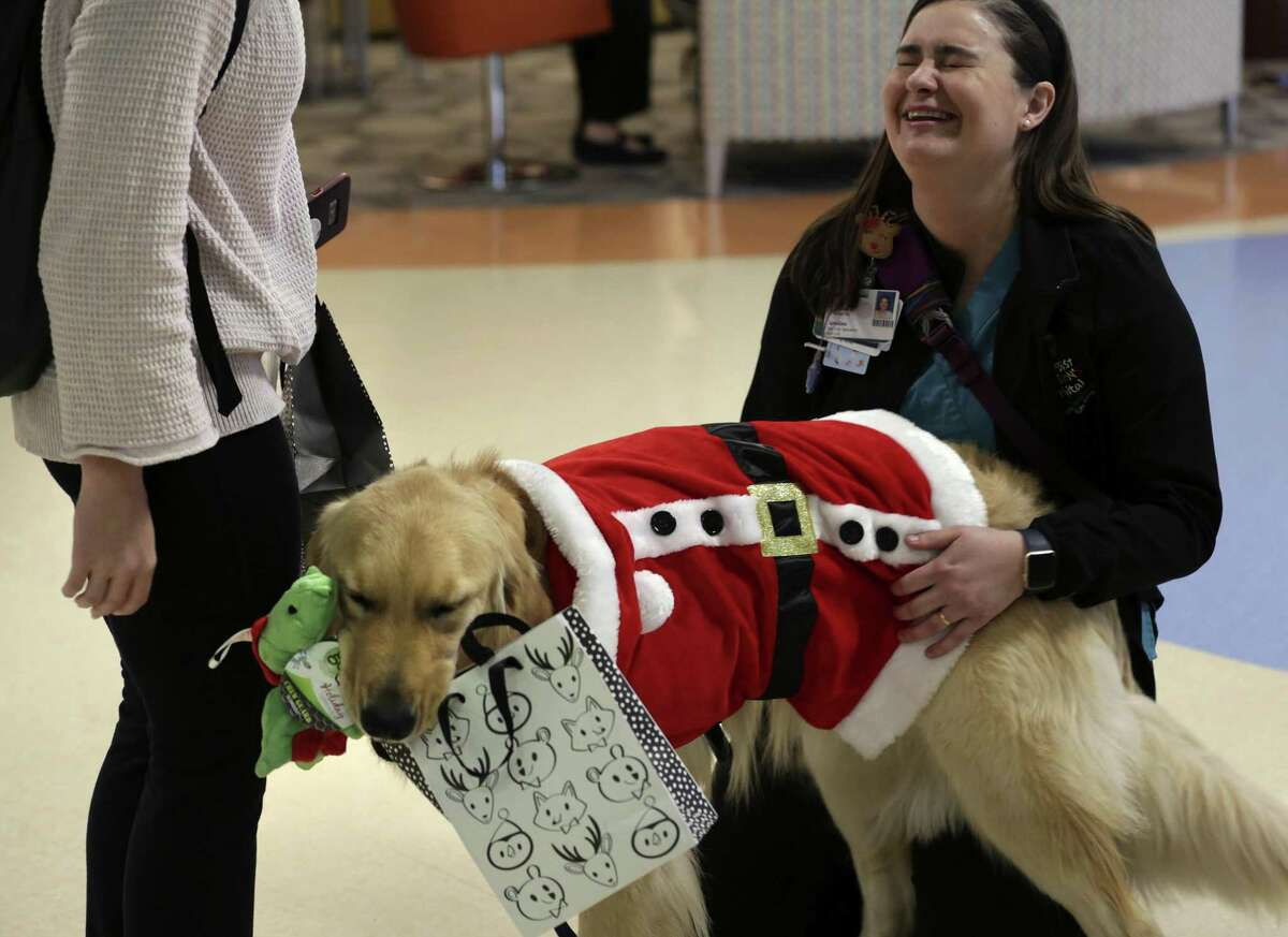 Caroline Wilson, right, handler of facility dog Jaime, reacts after Jaime took the bag containing a gift for him. Methodist Children's Hospital has two certified facility dogs to help patients cope with the stress of being in a hospital.
