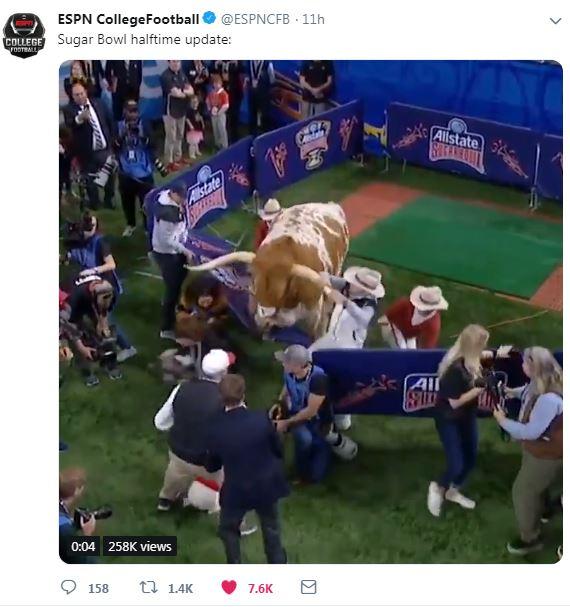 42634a87d4a Mascot meeting goes wrong at Sugar Bowl as Texas  Bevo charges Georgia s Uga  - San Antonio Express-News