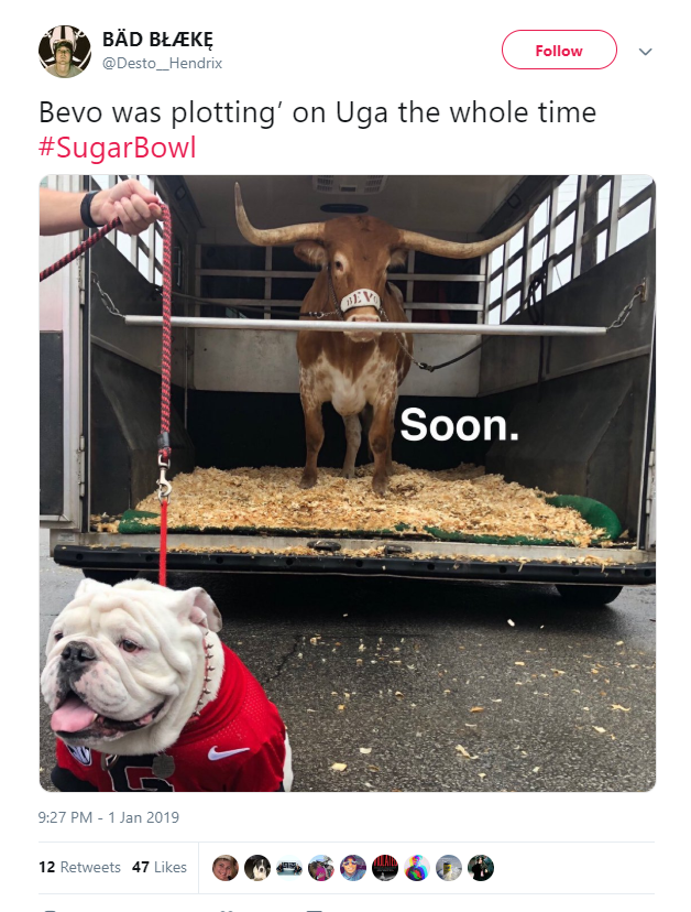 27c3d20fc02 People can t stop joking about Bevo the Longhorn charging at Uga the  Bulldog - Houston Chronicle