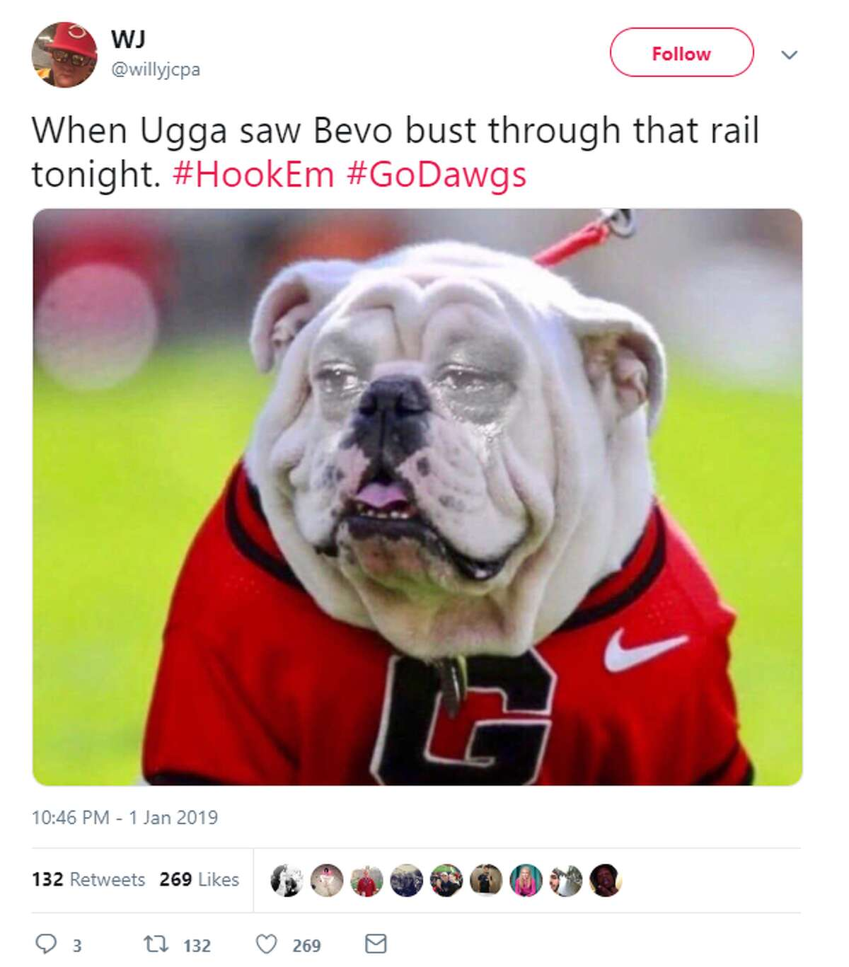 The Sugar Bowl is over, but people are still talking about the moment Texas' Bevo lunged at Georgia's mascot Uga before the game. Here's what they had to say.