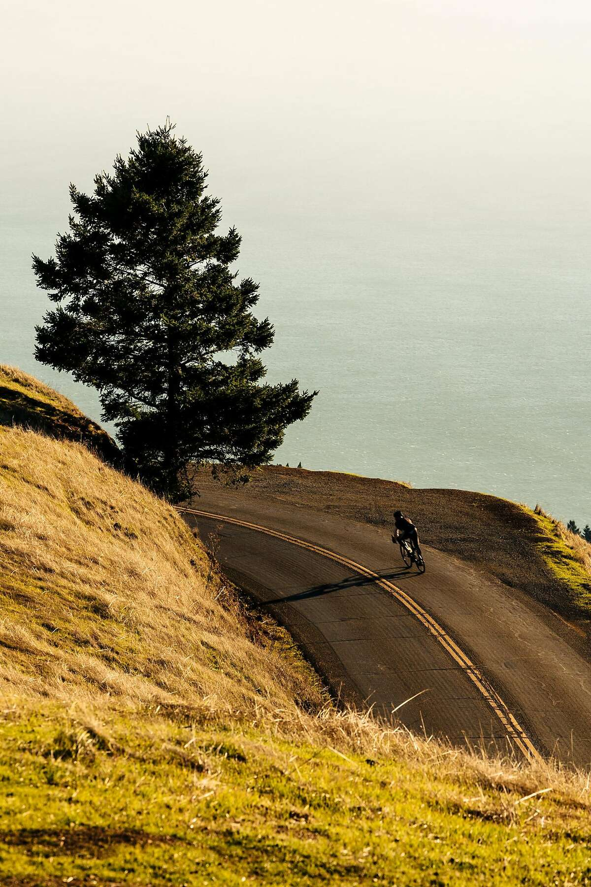 A biker makes his way down Mount Tamalpais State Park in Mill Valley, Calif., on Thursday, Dec. 13, 2018.