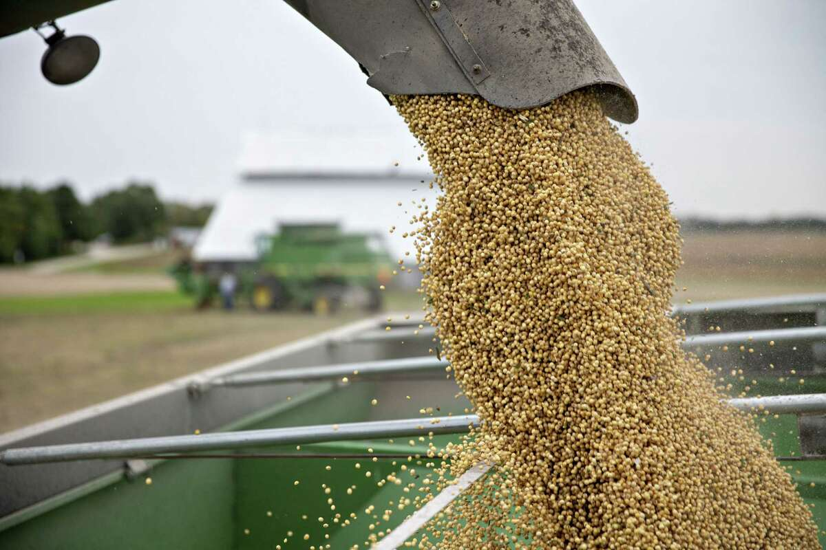 Soybeans are loaded into a grain cart during harvest in Wyanet, Ill., on Sept. 18, 2018.About 27.5 million tons of US soybeans are expected to go unsold this year as a direct consequence of the trade war with China.