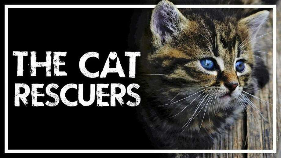 """Documentary Filmmaker Rob Fruchtman will present a talk on his new film, """"The Cat Rescuers"""" at the Scoville Memorial Library, Saturday, Jan. 12 at 4 p.m. Photo: Contributed Photo"""