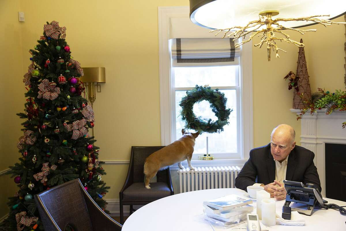 """The first dog Colusa """"Lucy"""" Brown sits as California Gov. Jerry Brown is interviewed by the San Francisco Chronicle editorial board on Thursday, Jan. 3, 2019, in Sacramento, Calif."""