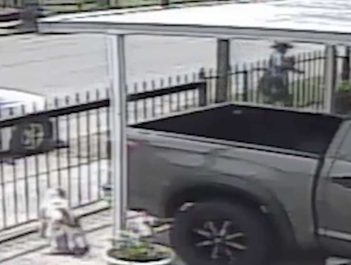 Razaq Ali-Balogun was delivering mail in the 400 block of E. Jack Avenue in May 2018 when he allegedly pepper sprayed a dog started barking at him from inside a fenced yard, according to the Harris County Precinct 5 Constable's Office.