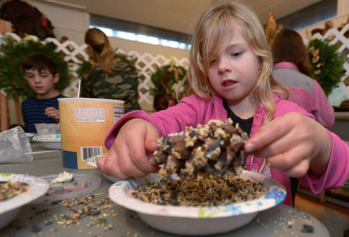 Wilton resident Elliot Francis coats a pinecone with birdseed during The 2nd Annual Wreaths for Wildlife Fundraiser at the Woodcock Nature Center Saturday, January 5, 2019, in Wilton, Conn. Participants decorated plain balsam wreaths with natural, safe, animal friendly materials such as dried apple and orange slices, pine cones, birdseed and nesting materials such as straw and Spanish moss.