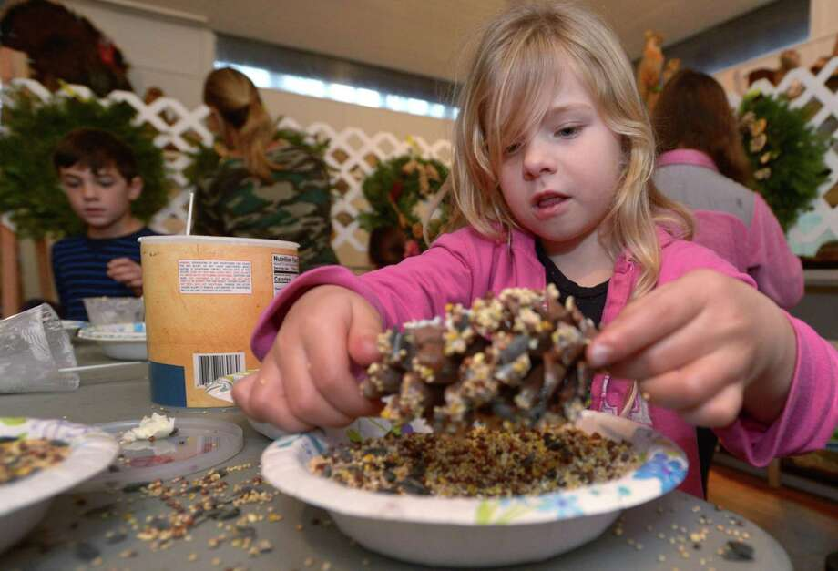 Wilton resident Elliot Francis coats a pinecone with birdseed during The 2nd Annual Wreaths for Wildlife Fundraiser at the Woodcock Nature Center Saturday, January 5, 2019, in Wilton, Conn. Participants decorated plain balsam wreaths with natural, safe, animal friendly materials such as dried apple and orange slices, pine cones, birdseed and nesting materials such as straw and Spanish moss. Photo: Erik Trautmann / Hearst Connecticut Media / Norwalk Hour