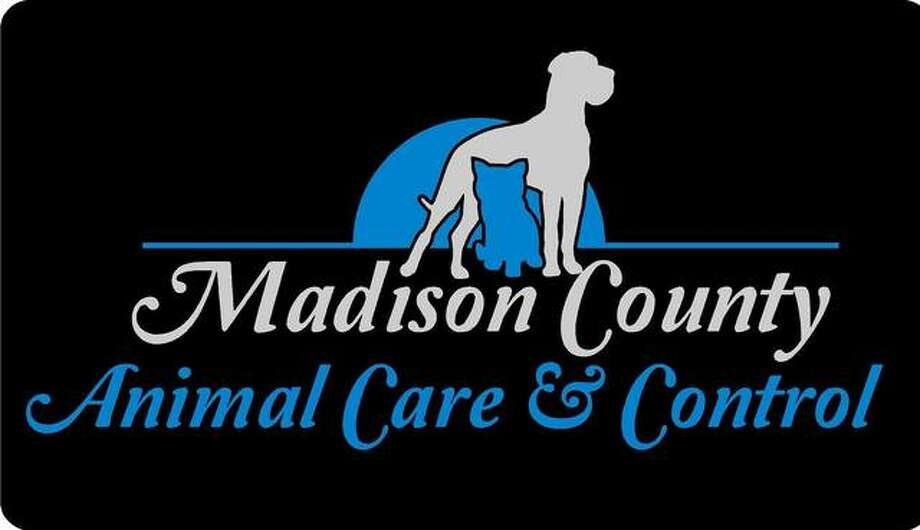 Madison County Animal Care and Control's newly launched logo, featuring illustrations of animals along with text. Photo: For The Intelligencer