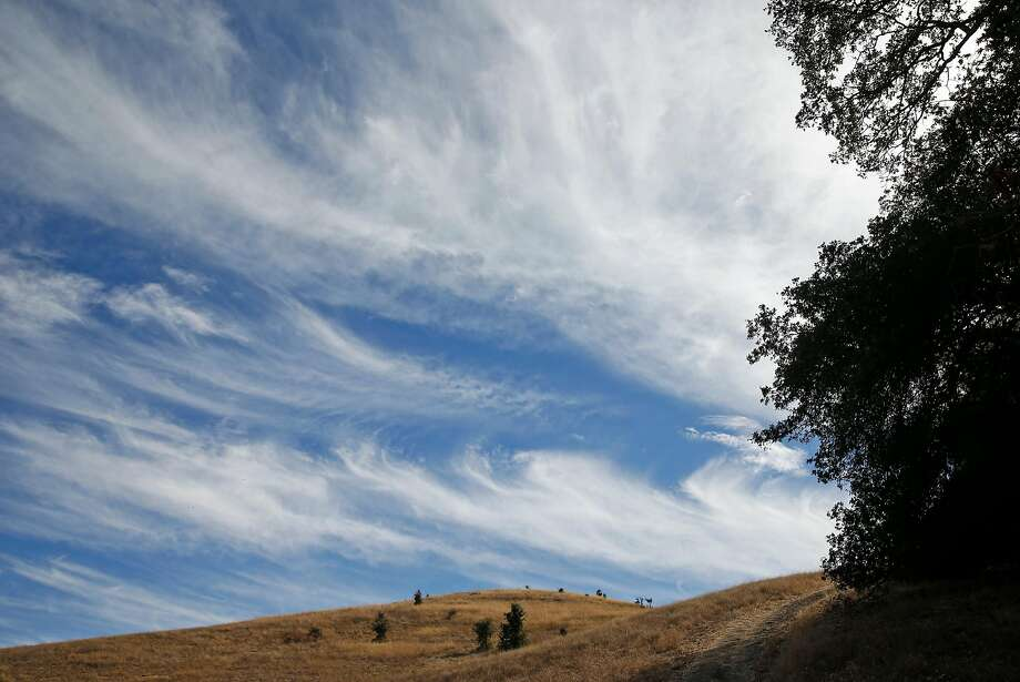 Hiking at Briones Regional Park: Why don't we do this all the time? Photo: Scott Strazzante / The Chronicle 2015