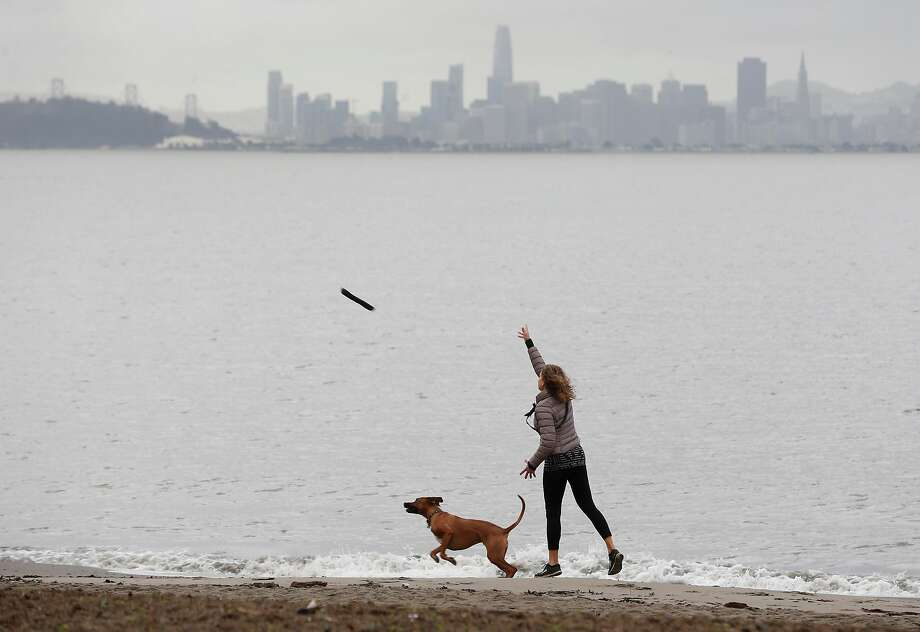 A woman tosses a stick for her dog at Albany Beach during a break between storms in Albany, Calif. on Wednesday, Jan. 9, 2019. Photo: Paul Chinn / The Chronicle