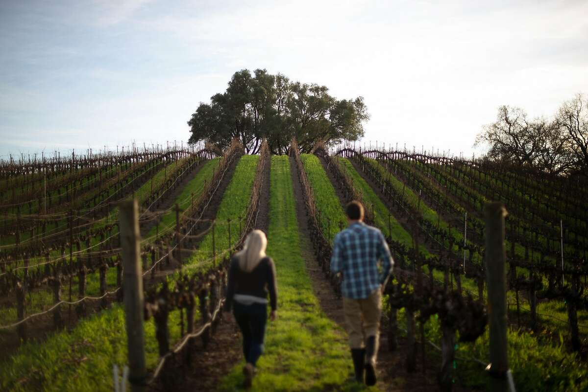 Karin and Justin Warnelius-Miller, seen in 2018, stroll through vines planted in 1969 by Justin's father at Garden Creek Vineyards in Geyserville. They've turned some of their smoke-tainted 2019 fruit into grappa.