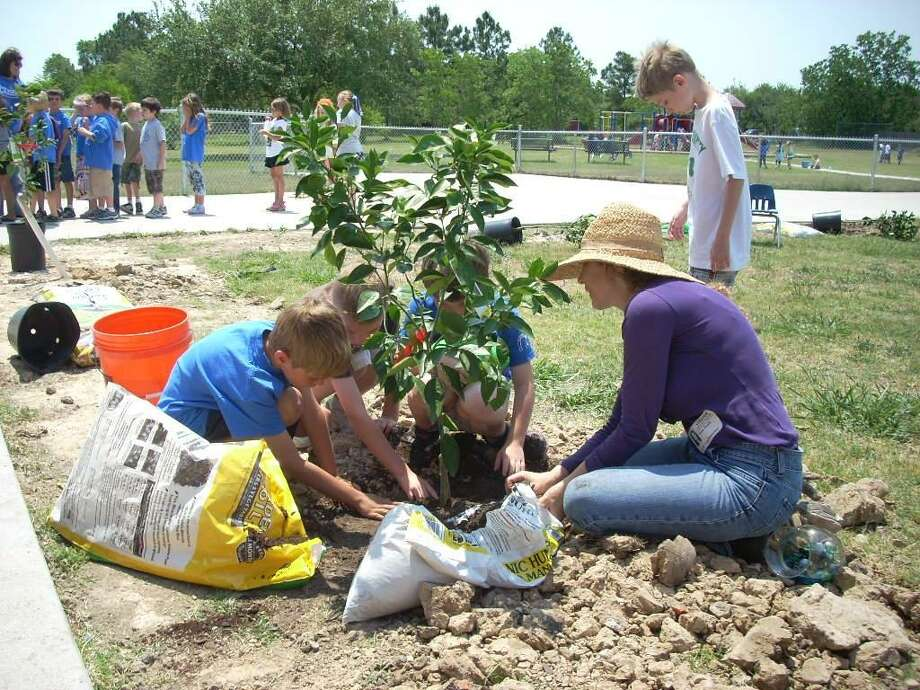 The Woodlands is known for its lush forest buffers and plethora of trees. In effort to continue the greening of the township, local groups are seeking volunteers for an annual tree-planting day on Feb. 9. Photo: Courtesy Friendswood ISD / courtesy Friendswood ISD