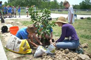 The Woodlands is known for its lush forest buffers and plethora of trees. In effort to continue the greening of the township, local groups are seeking volunteers for an annual tree-planting day on Feb. 9.