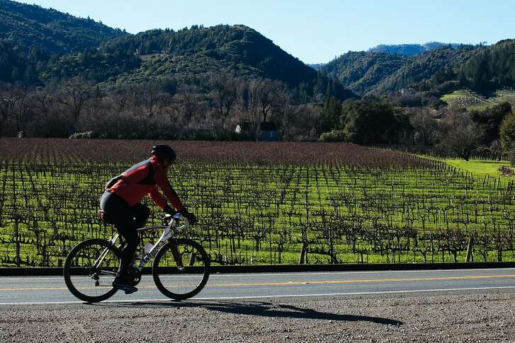 A biker makes his way down West Dry Creek Road in Healdsburg, Calif. Saturday, Jan. 6, 2018.