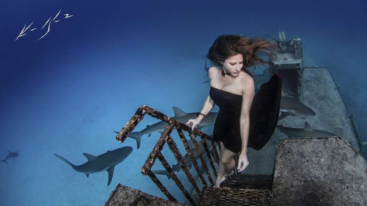 League City resident Ken Kiefer is a self-taught photographer specializing in underwater photos. His award-winning work ranges from pregnancy shoots, cosplay and family holiday cards to his true passion: marine wildlife.