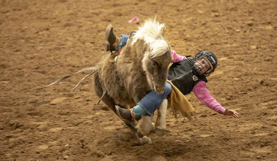 The Sandhills Rodeo. 1/5/2019  Jacy Lewis/191 News Photo: Jacy Lewis/191 News