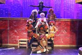 "Performers in Pearland High School's production of ""Cats"" include top, Zach Nelson; top row from left, Natalia Leslie, Taylor Stowers and Davian Raggio; standing from left, Brooklynn King, Keagan Greer and Alexandra Hattan; and bottom, Jael Davis."