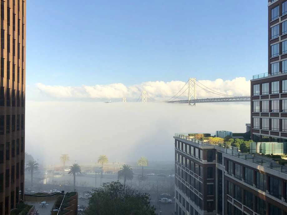 The Bay Bridge appears to have been swallowed up by fog on Jan. 10, 2018. Photo: Kevin Phillips