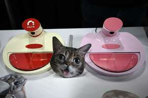 """Mookkie, a smart pet feeder which recognizes individual animals, is displayed during a press event for CES 2019 at the Mandalay Bay Convention Center on January 6, 2019 in Las Vegas, Nevada. Through a wide-angle camera that deploys logic similar to the """"face-unlock"""" feature of modern smartphones, Mookkie records images of the animal for which food is intended, then deploys the trillion operations per second necessary for visual recognition, allowing the product to visually identify the presence of the pet and activate a door opening to allow access to food. (Photo by Robyn Beck / AFP)ROBYN BECK/AFP/Getty Images"""