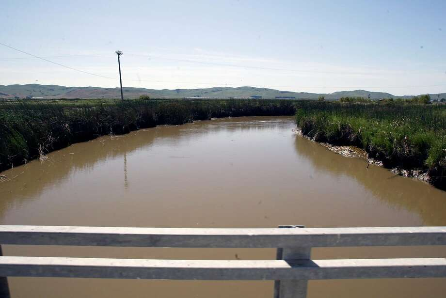 A slough near Suisun that is similar to found along San Pablo Bay — such as the one near Schellville in Sonoma County, where approximately 2 million gallons of wastewater spilled from a leaking pipe valve. The valve was closed on January 12. Photo: Lance Iversen / SFC