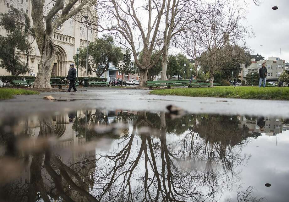 Rain water begins to puddle along a walkway of Washington Square Park in the North Beach neighborhood of San Francisco, Calif. Saturday, Jan. 5, 2019. Photo: Jessica Christian, The Chronicle