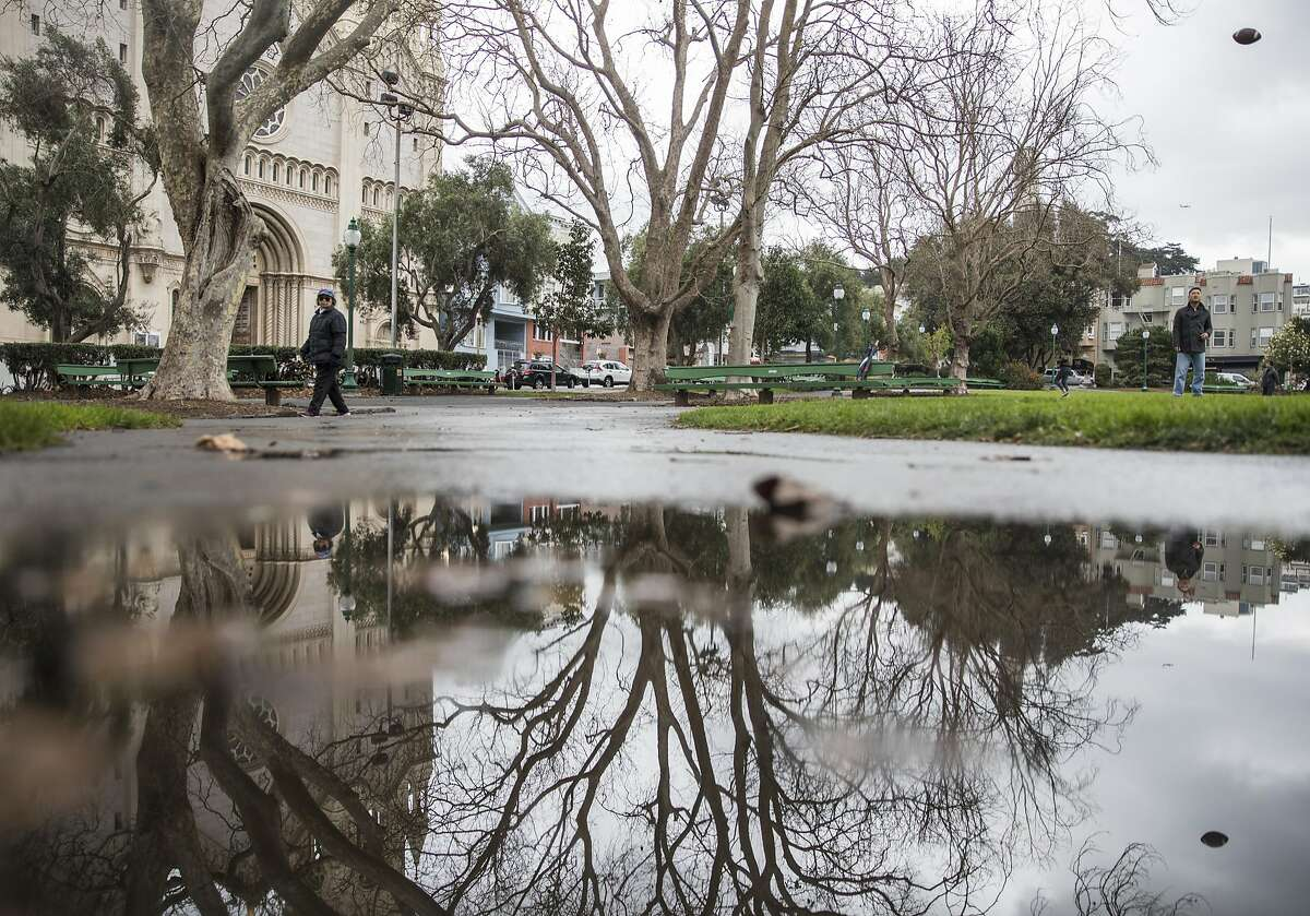 Rain water begins to puddle along a walkway of Washington Square Park in the North Beach neighborhood of San Francisco, Calif. Saturday, Jan. 5, 2019.