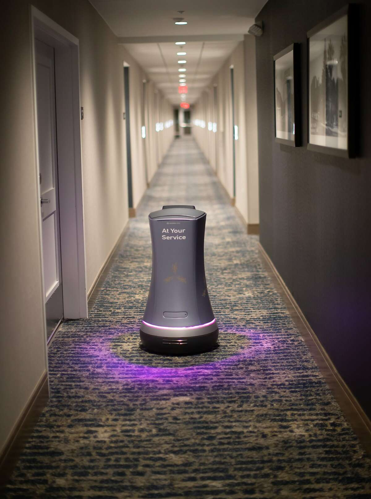 Rose the robot delivers a toothbrush to a room at The Hotel Trio on Monday, Jan. 7, 2019, in Healdsburg, Calif.