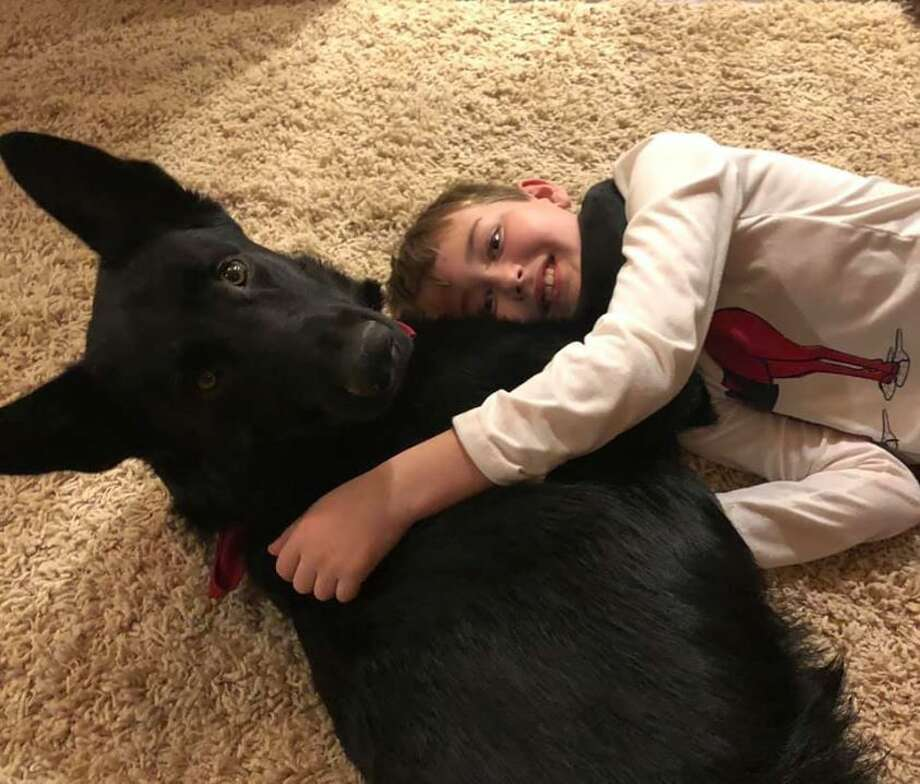 Former trucker drives cross-country to bring dog to boy with cancer